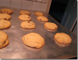 Cookies 050